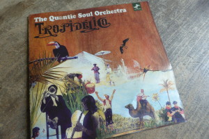 The Quantic Soul Orchestra - Tropidelico