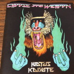 Hiatus Kaiyote - Choose Your Weapon (2015)